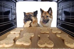 Hundekekse selber backen