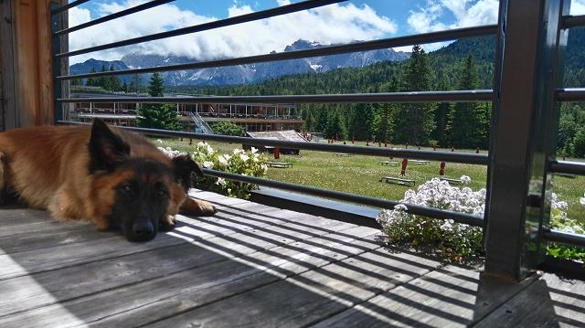 Blick vom Balkon Kranzbach