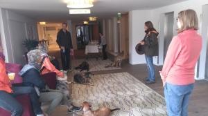 Hunde Workshop Kranzbach