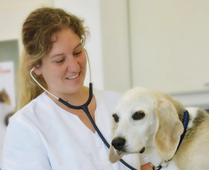 Dr. bader-mechler mit Hund Rocky