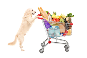 Hund Einkaufwagen